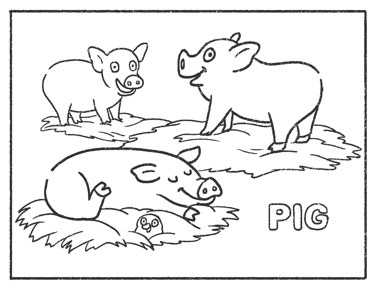 Pig_Colouring
